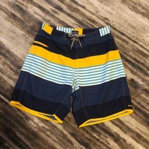 Patagonia Stripe Nylon Board Shorts Size 36